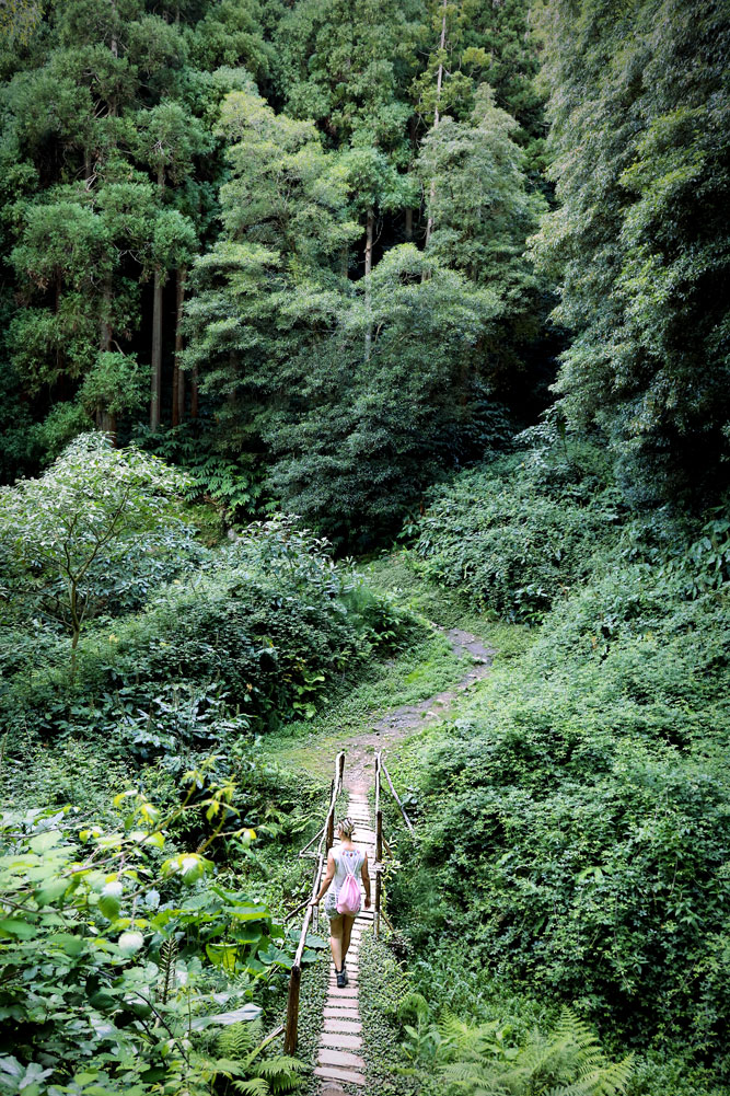 all-the-somethings-wandern-azoren-azores-hiking-jungle-bridge